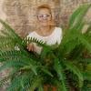 галина, 52, г.Льгов