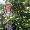 Svetlana-Lina, 52, г.Славянск-на-Кубани