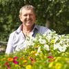 Александр, 57, г.Владимир