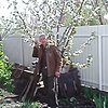 Андрей Юрташкин, 56, г.Ахтырский