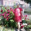 галина, 64, г.Севск