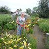 Лариса, 65, г.Кушва